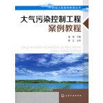 环境工程案例教程丛书--大气污染控制案例教程