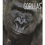 预订 Living Wild: Gorillas[ISBN:9780898125528]