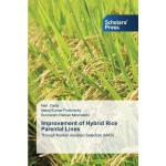 预订 Improvement of Hybrid Rice Parental Lines[ISBN:978363971