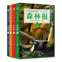森林报(春、夏、秋、冬)升级版套装(4本一套)