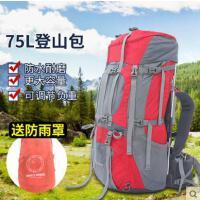 户外新款背包登山包双肩男女旅行旅游背包时尚简约多功能防水75L大容量