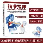 健身教练书籍 肌肉力量训练 精准拉伸疼痛消除和损伤预防的针对性练习 运动爱好者和不爱动的普通人也获益匪浅 人民邮电 艺术