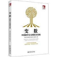 变数:中国数字企业模型及实践 北京大学出版社