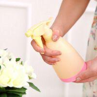 园艺清洁糖果色喷壶洒水壶 手压式浇花喷水壶喷水瓶