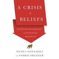 英文原版 信念危机:投资者心理和金融脆弱性 A Crisis of Beliefs: Investor Psycholo