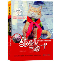 当BOB来敲门:伦敦街猫Bob眼中的世界
