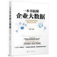 一本书搞懂企业大数据 消费金融的认知、商业银行消费金融、消费金融公司、互联网消费金融、消费金融风控等内容 投资理财书籍