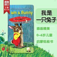 I Am a Bunny 我是一只兔子 英文原版 儿童读物 低幼童纸板书 斯凯瑞