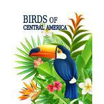 预订 Birds of Central America: Belize Field Guides Observers