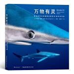 万物有灵: 国际野生生物摄影年赛第50届获奖作品