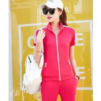 新款纯棉立领拉链短袖T恤跑步长裤 休闲运动服套装女 支持礼品卡
