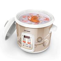 Tonze/天际电炖锅 DGD30-30CWD DGD20-20CWD电炖锅煮粥煲汤锅2L 3L 定时预约快速煲