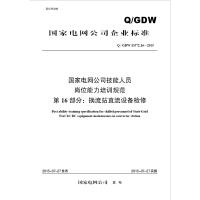 Q/GDW13372.16国家电网公司技能人员岗位能力培训规范 第16部分 换流站直流设备检修