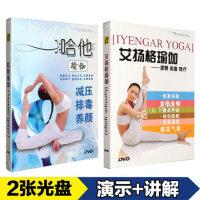 正版 yoga哈他艾扬格瑜伽初级入门教学视频教程详解教材光盘2DVD光碟片
