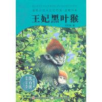 动物小说大王沈石溪・品藏书系:王妃黑叶猴