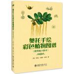 奥托手绘彩色植物图谱(精华版口袋书)