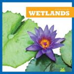 预订 Wetlands [ISBN:9781620317365]