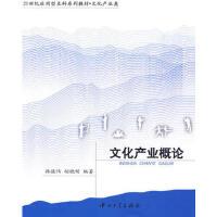 【二手旧书8成新】文化产业概论 韩骏伟,胡晓明著 9787306033536