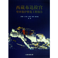 西藏布达拉宫壁画保护修复工程报告(精)