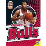 【预订】Chicago Bulls