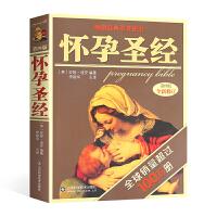 【马伊�P】怀孕圣经第4版全新修订版怀孕书籍十月怀胎孕妇孕期书籍大全怀孕期一天一页新手准妈妈爸爸备孕食谱营养三餐饮食书