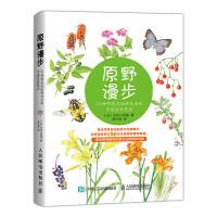 原野漫步 370种野花与88种昆虫的手绘自然笔记