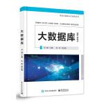大数据库―高级大数据人才培养丛书