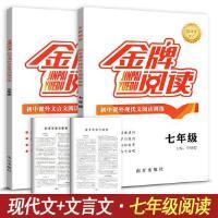 金牌阅读 7七年级文言文+现代文阅读训练全套2本初中语文课外阅读