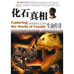 化石真相:206块骨头之外的生命传奇