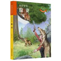 动物小说大王沈石溪 致敬生命书系――狼妻