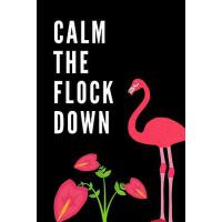 预订 Calm the Flock Down: The Ultimate Summertime Pink Wading