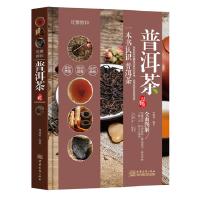 【二手旧书9成新】BY/优雅醇和:普洱茶品鉴-林婧琪-9787510316784 中国商务出版社