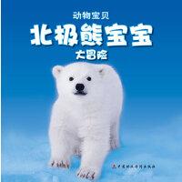 北极熊宝宝大冒险