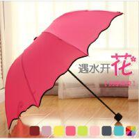 日韩国创意晴雨伞彩虹伞 黑胶防晒防紫外线太阳伞遮阳伞 遇水开花