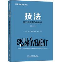 项目管理实践三法:技法:提升绩效与改进过程