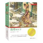国际大奖小说・升级版――海蒂的天空