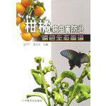 柑橘病虫害防治原色生态图谱