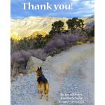 预订 Thank you [ISBN:9781978293908]