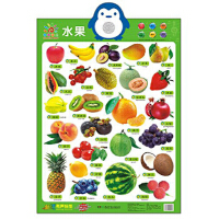 阳光宝贝 新版有声挂图:水果