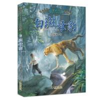沈石溪真情动物小说系列:白斑母豹