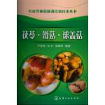 名贵珍稀菇菌栽培新技术丛书--茯苓・滑菇・球盖菇