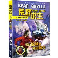 荒野求生少年生存小说系列:8雪豹险峰的神秘洞穴