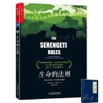 *畅销书籍* 生命的法则 在塞伦盖蒂草原,看见万物兴衰的奥秘 肖恩・B・卡罗尔 生物界的道德经 生命科学 科普读物 在