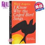 笼中鸟唱歌 英文原版 I know why the caged bird sings Maya Angelou Bal