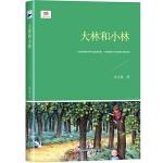 大林和小林(新课标全本,荣获豆瓣8.9高评分的经典童话,被誉为中国儿童文学第二座里程碑)