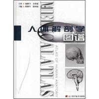 【二手旧书8成新】人体解剖学图谱 韩秋生 9787538140101