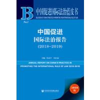 中国促进国际法治蓝皮书 中国促进国际法治报告(2018~2019) 作者:肖永平 冯洁菡 主编