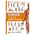 拉伸训练彩色图谱 健美肌肉训练书 女性无器械健身教程 体能训练书 拉伸训练书籍 健身书 无器械健身力量训练书籍肌肉训练
