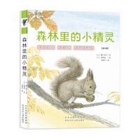 """""""森林里的小精灵""""(描述诞生与成长的自然故事绘本。让孩子领略大自然的神奇与美丽,了解成长的艰难,感受生命的力量。)"""