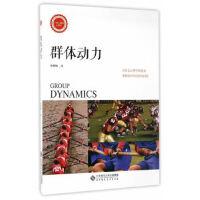 群体动力 孙晓敏 9787303219896 北京师范大学出版社